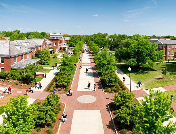 Looks on campus: sydney - american university