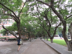 aThe campus (2)