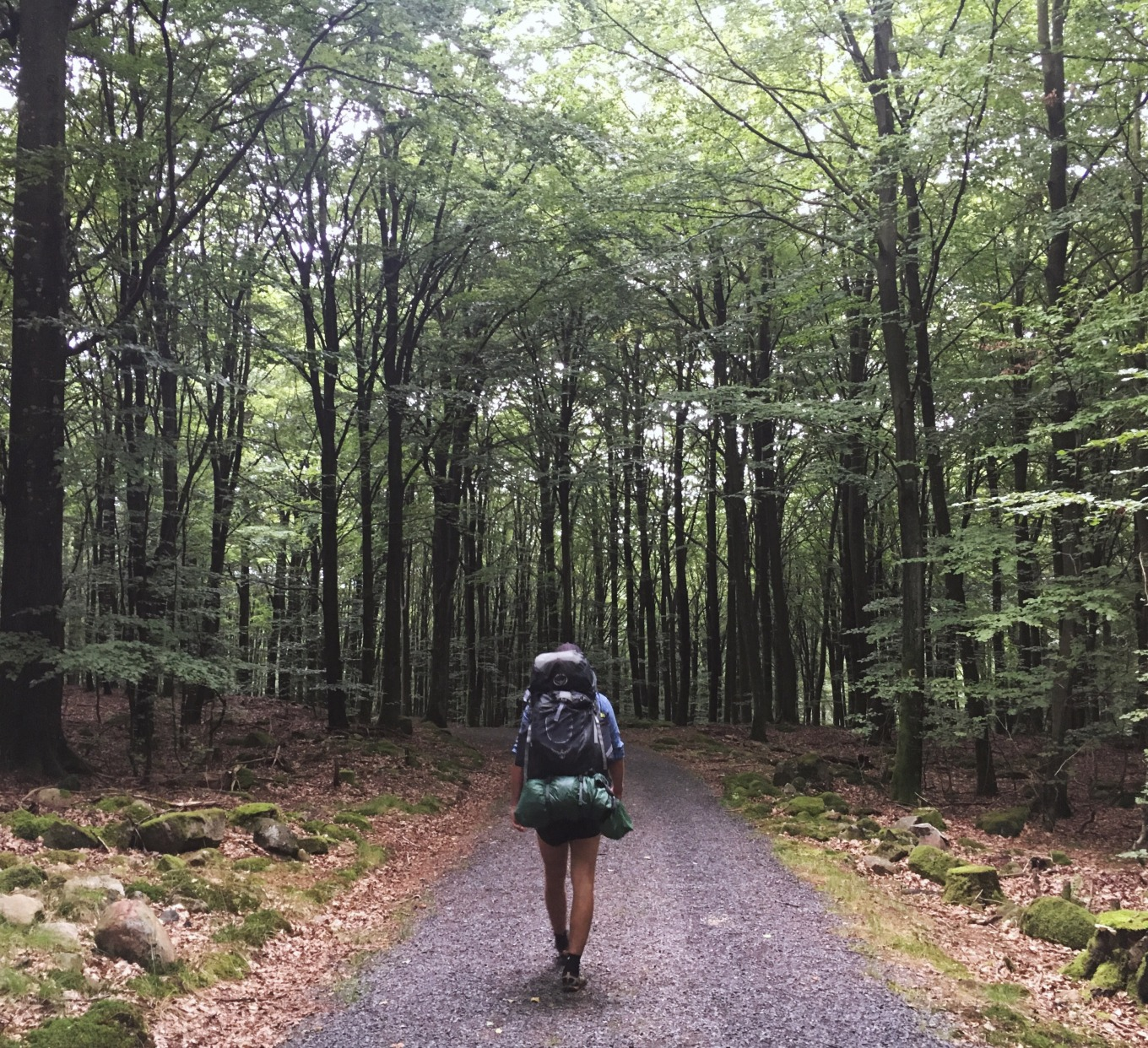 Road tripping, hiking and camping with a Swedish friend in the southern county of Skåne, Sweden