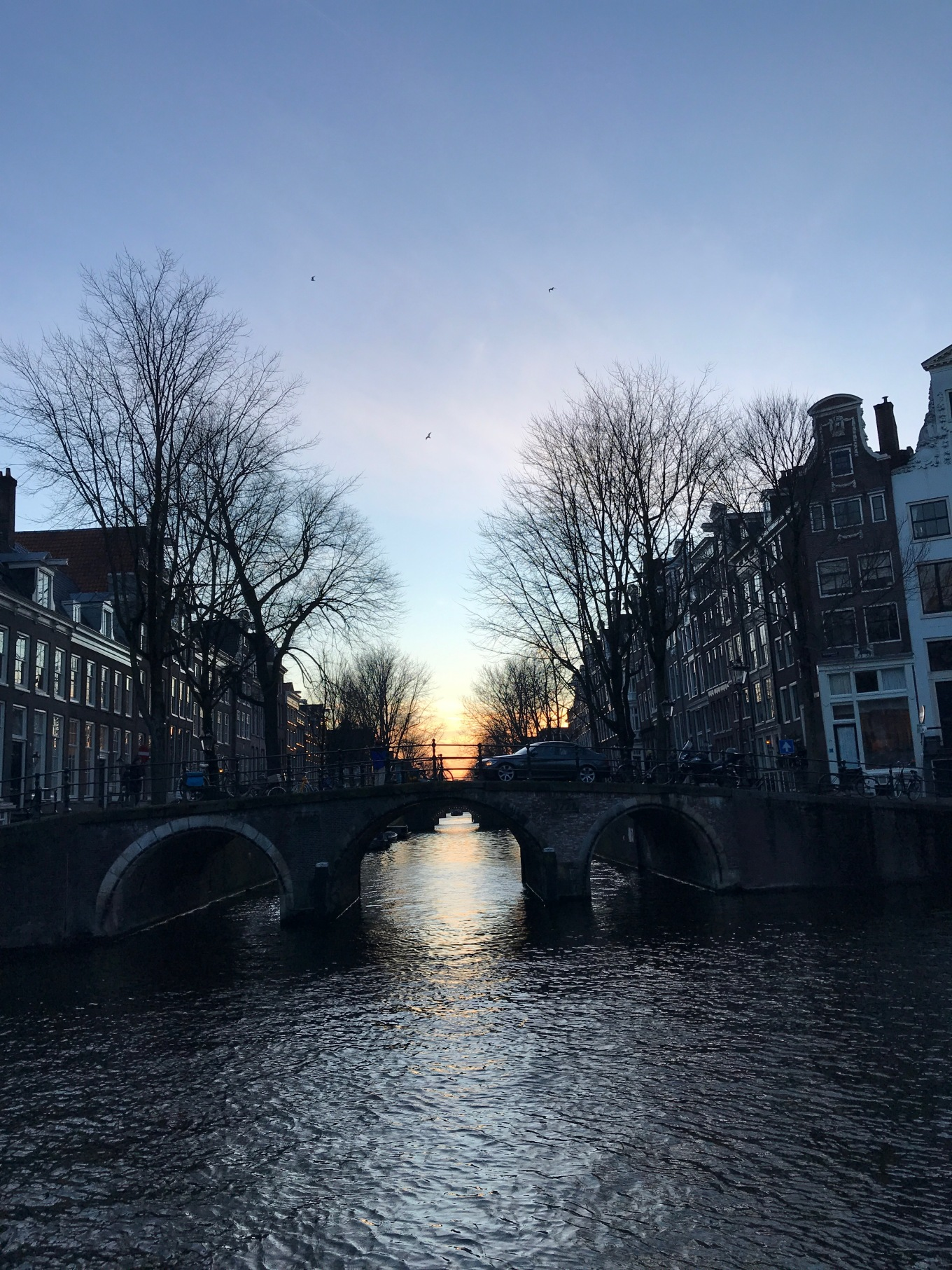 From Home to Holland – University of Amsterdam, the